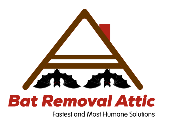 Bat Removal Attic Logo-2