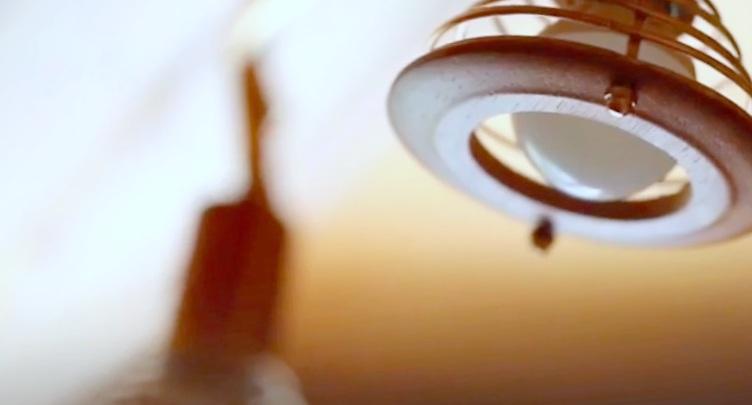 bright lights;Bats Deterrent