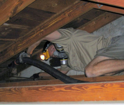 cleaning attic