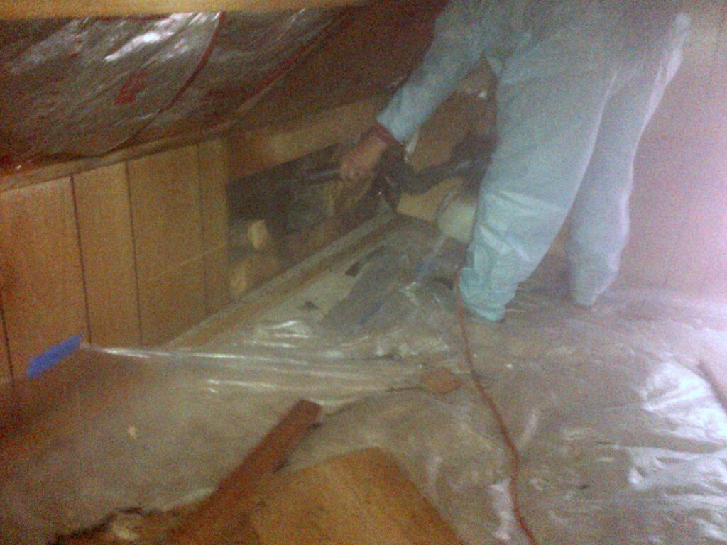 cleaning up attic; Remove Bats From Attic
