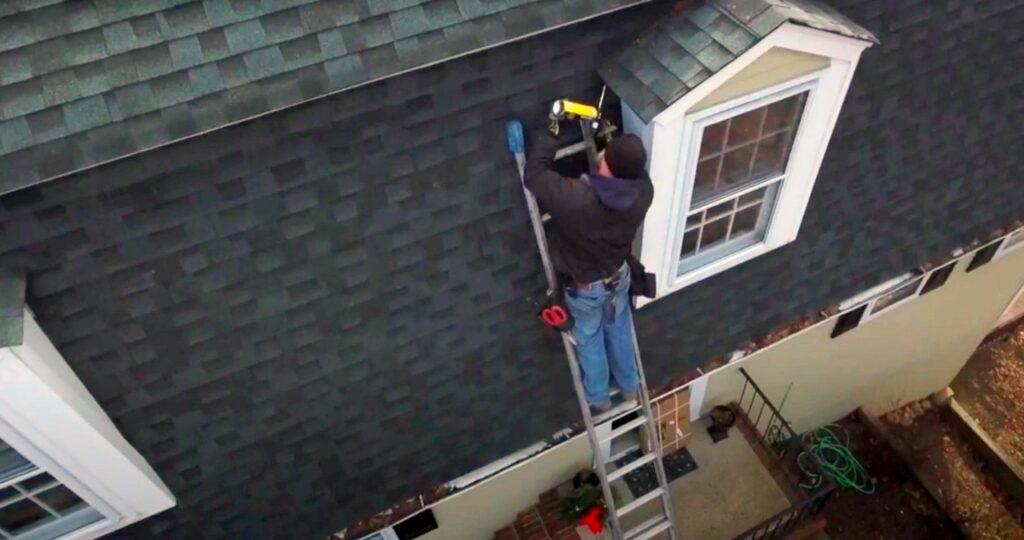 home repairs; Insurance Cover Bat Damage